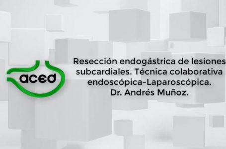 Resección endogástrica de lesiones subcardiales por técnica colaborativa laparoscopica – Endoscópica. Dr Muñoz